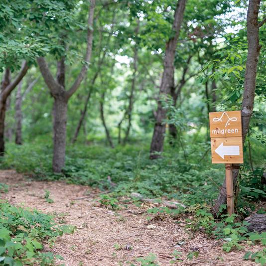 小布施千年の森 写真