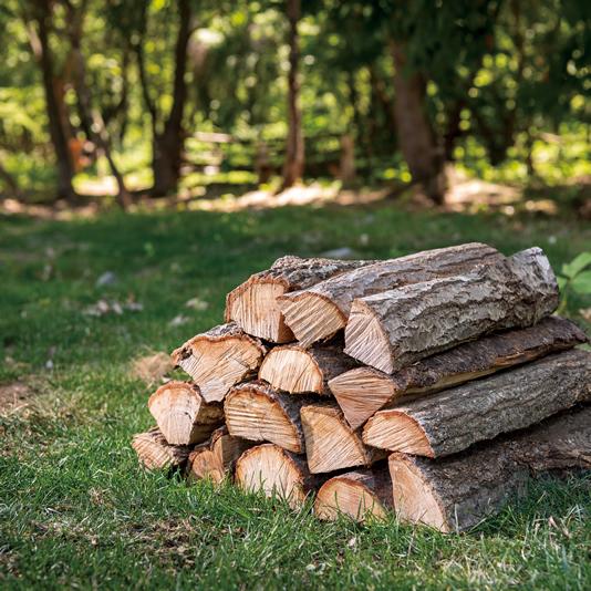 「小布施千年の森」の極上の薪 写真