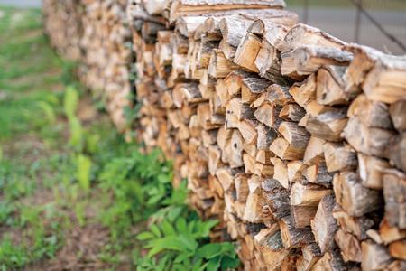 「小布施千年の森」の極上の薪の写真