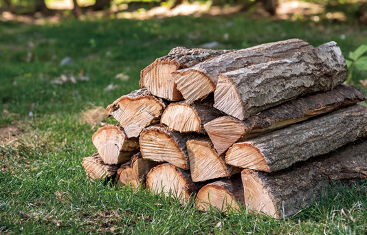 「小布施千年の森」の極上の薪 イラスト