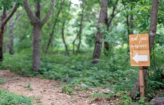 小布施千年の森 イラスト